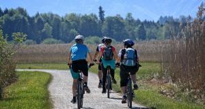 Rajd rowerowy drogami Powiatu Brzeskiego